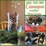 DIY Cinnamon Scented Pine Cones- Easy & Inexpensive!
