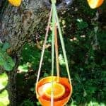 Super Simple DIY Oriole Bird Feeder in 15 Minutes