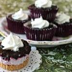 Frozen Wild Blueberry Desserts