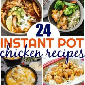 24 Easy Instant Pot Chicken Recipes